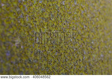 Coarse Olive Tinted Background Or Wallpaper. Rough Textured Surface. Unusual Backdrop Of Rusty Iron.