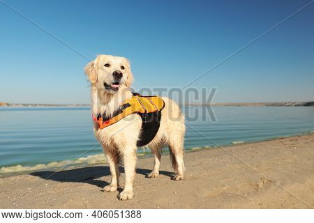 Dog Rescuer In Life Vest On Beach Near River