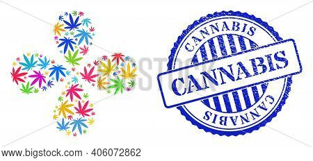Cannabis Colorful Explosion Abstract Flower, And Blue Round Cannabis Unclean Stamp Print. Element Ce