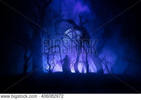 Death With A Scythe In The Dark Misty Forest. Woman Horror Ghost Holding Reaper In Forest, Halloween