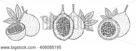Three Compositions Of A Whole Orange Granadilla Fruit And Halves Of Fruit With Leaves. Black Outline