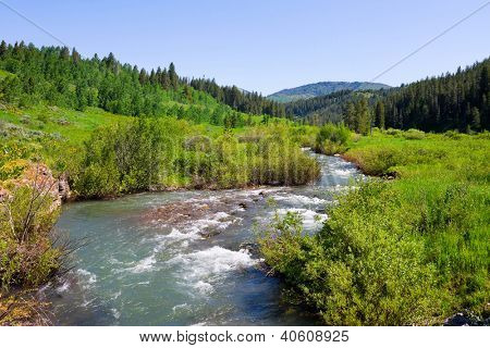 Countryside with a creek in Idaho State