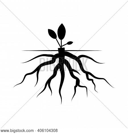 Black Root With A Sprout. Root With A Leaf. Birth Symbol. Vector Illustration Of The Beginning Of Li