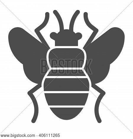 Fly Solid Icon, Pest Control Concept, Flea Sign On White Background, Bloodsucker Parasites Icon In G