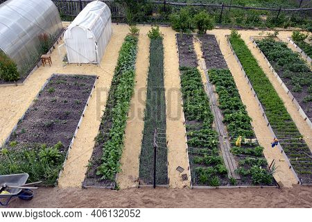 Vegetable Beds And Greenhouses In The Vegetable Garden In Spring. Long, Even Ridges Are Parallel To