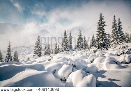 Picturesque view of snow-capped mountains on a frosty day. Location place of Carpathian mountains, Ukraine, Europe. Photo wallpapers. Christmas concept. Happy New Year! Discover the beauty of earth.