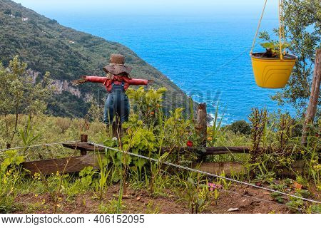 Scarecrow With Hat In A Vegetable Garden With Mountain And Sea View On The Background.