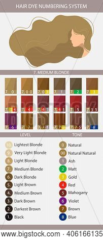 Stock Vector Palette With Hair Dye Numbering System, Levels, Tones And Undertones. Palette For Level