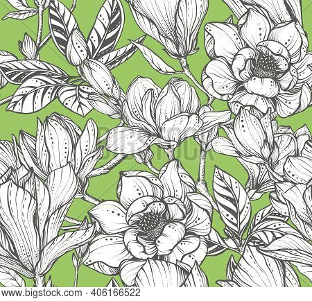 Vector Floral Seamless Pattern Of Magnolia Flowers And Branches.