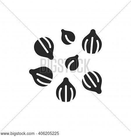 Coriander Black Glyph Icon. , Seasoning. Vector Illustration