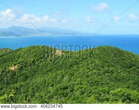 Panoramic View Of Tropical Landscape With Lush Vegetation, Caribbean Sea And Summer Sky With Cumulus