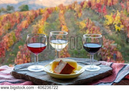 Taste Of Portugal, Variety Of Fortified Port Wines And Goat And Sheep Cheeses, Produced In Douro Val