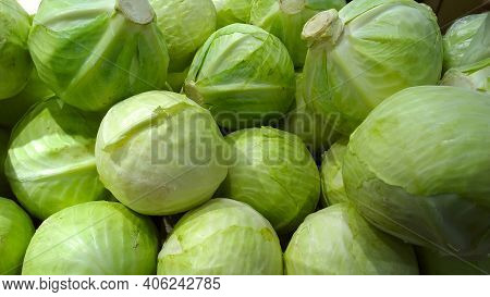 Food Backgrounds. Pile Of Cabbage On Supermarket Shelves. Brassica Oleracea. Healthy Eating And Life