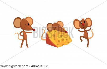 Funny Mice In Different Action Poses Set, Cute Comic Rodents Characters Cartoon Style Vector Illustr