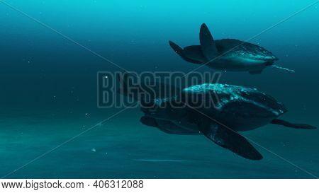Closeup View Of Tortoises Swimming In The Deep Blue Ocean Water, Slow Motion Underwater Scene Of Tor