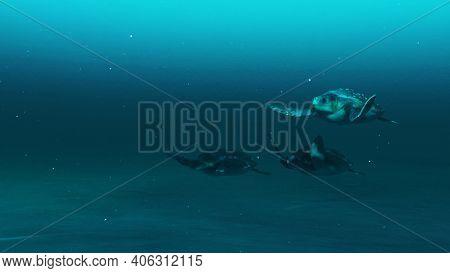 Closeup Of Three Tortoises Swimming In The Deep Blue Ocean Water, Slow Motion Underwater Scene Of To