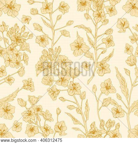Elegant Seamless Pattern Of Rapeseed Plant Or Canola Flowers. Endless Repeatable Floral Texture In R