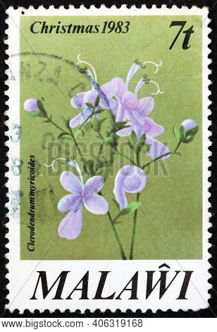 Malawi - Circa 1983: A Stamp Printed In Malawi Shows Butterfly Bush, Clerodendrum Myricoides, Is A S