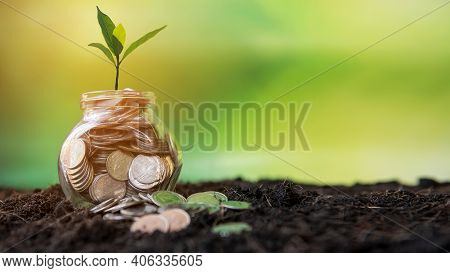 Plant Growing In Money Coins Glass Jar On Dry With Investment  For Planning Travel And Retirement. G