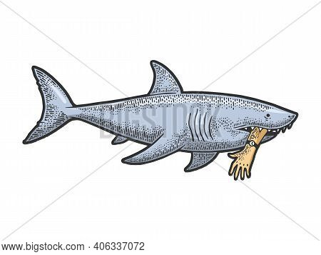 Shark With Bitten Off Hand In Mouth Color Sketch Engraving Vector Illustration. Tee Shirt Apparel Pr