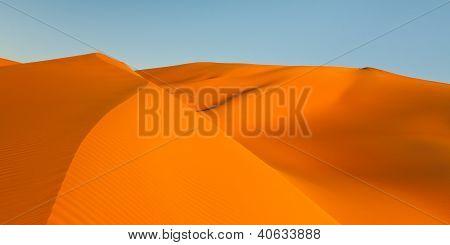 Golden Sand Dunes Panorama