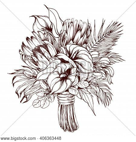 Tropical Bouquet With Protea And Exotic Flamingo Flowers. Hand Drawn Illustration Isolated On White