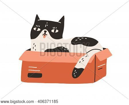 Cute And Funny Cat Lying Inside Cardboard Box With Tongue Out Isolated On White Background. Adorable