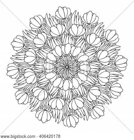 Crocus Flowers Mandala Stock Vector Illustration. Early Spring Flowers Mandala Coloring Page For Kid