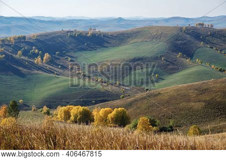 Agricultural Fields In The Siberian Hills, Haymaking. Autumn In The Mountains Of Altai.
