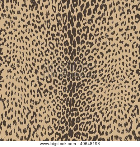 hot and sophisticated, leopard animal seamless skin - vector