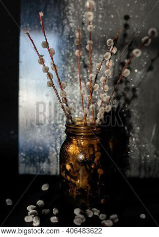The Branches Of A Flowering Willow Stand In A Dark Glass Jar Against A Background In Sunlight.