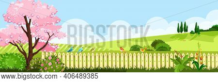 Spring Landscape Nature Vector Background With Grass Meadow, Sakura Blossom Tree, Hedge, Hills, Sky,