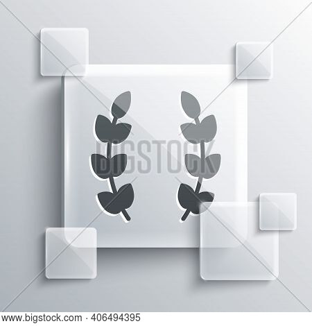 Grey Laurel Wreath Icon Isolated On Grey Background. Triumph Symbol. Square Glass Panels. Vector