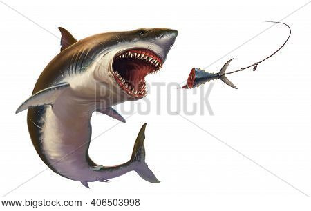 Great White Shark Attack Bait Tuna Tail Illustration Isolate Realism. A Great White Shark Jumps Out