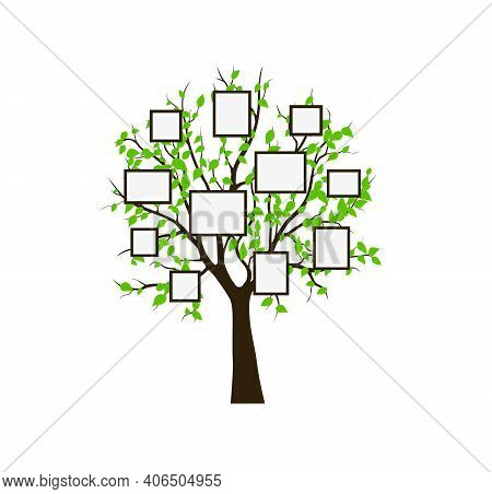 Frame Tree Family Vintage, Nature Print. Vector