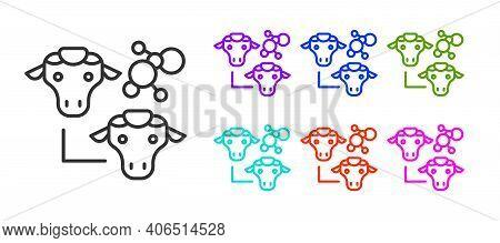 Black Line Cloning Icon Isolated On White Background. Genetic Engineering Concept. Set Icons Colorfu