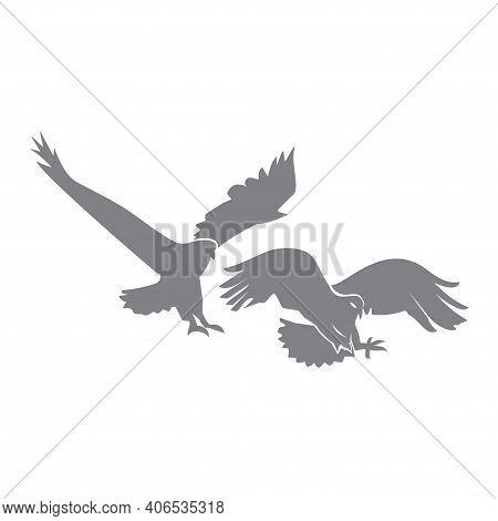 Eagle Hawk Set  Animal Symbol Creative Luxury Modern Mascot Emblem Template