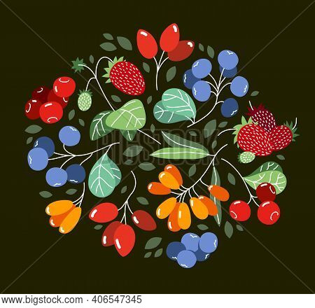 Wild Berries Fresh And Ripe Tasty Healthy Food Vector Flat Style Illustration Over Dark Background,