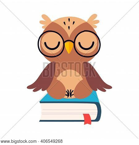 Wise Brown Owl, Cute Bird Cartoon Character Sitting And Relaxing On Book Vector Illustration