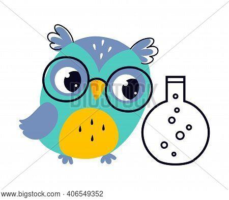 Wise Owl In Glasses, Cute Bird Chemistry Teacher Cartoon Character Vector Illustration