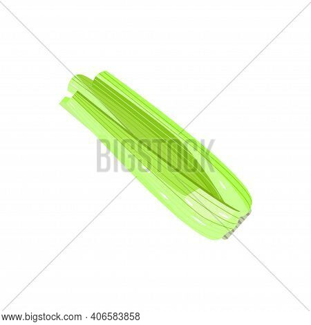 Simple Fresh Celery Without Leaves Isolated On White. Natural Vegetable For Celery Stalk For Juicing