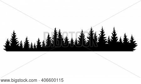 Fir Trees Silhouettes. Coniferous Spruce Horizontal Background Pattern, Black Evergreen Woods Vector