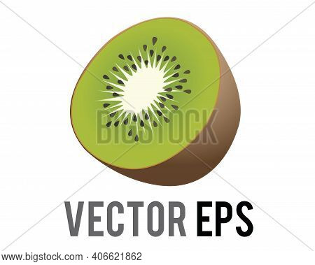 The Isolated Vector Kiwi Fruit Icon With Fuzzy, Brown Skin, Light Green Flesh, White Core And Black
