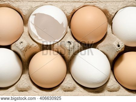 Open Egg Box With Four Brown Eggs Isolated On White Background With Clipping Path. Fresh Organic Chi