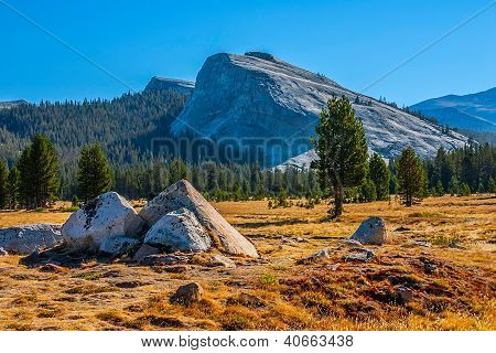 Tuolumne Meadows In Summer, Yosemite National Park.