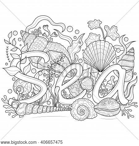 Inscription Sea. Seashells And Algae.coloring Book Antistress For Children And Adults. Illustration