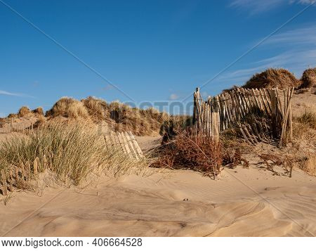 Sand Dunes And Paling Fence To Prevent Erosion At Camber Sands, Sussex, Uk
