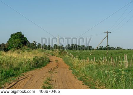 Rural Dirt Road In The Pampa Biome South Of Latin America