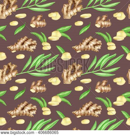 Watercolor Ginger Root Seamless Pattern With Slices And Leaves. Hand Drawn Ginger Rhizome On Dark Br