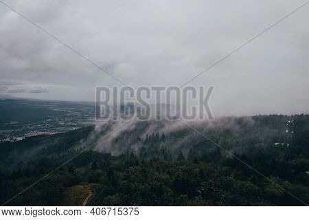 Forest Evaporates Water. It Is Cold Because It Consumes Solar Energy To Evaporate Water. Rainy Weath